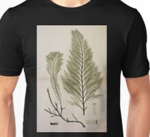 The botany of the Antarctic voyage of H M  discovery ships Erebus and Terror in the Years 1839 1843 Joseph Dalton Hooker V1 186 Unisex T-Shirt