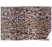 Seashore Sand Poster