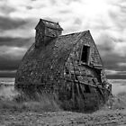 Grain Shed - BW by Patrick Kavanagh