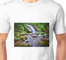 Flat Top Falls Unisex T-Shirt