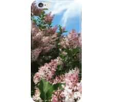 Blooming lilacs iPhone Case/Skin