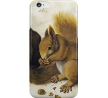 Vintage famous art - Albrecht Durer - Two Squirrels One Eating A Hazelnut iPhone Case/Skin
