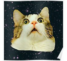 Stunned Space Cat Poster
