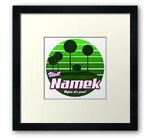 Visit Namek Framed Print