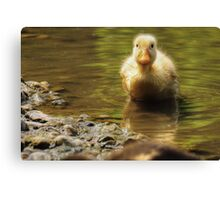 Is It Coz I Is Yellow? Canvas Print