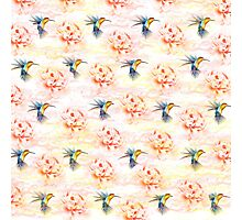 Colibri pattern Photographic Print