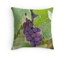 grape and vineyard Throw Pillow