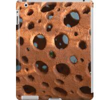 holes iPad Case/Skin