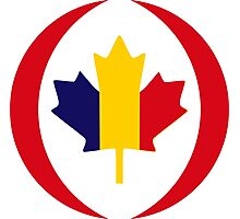 Romanian Canadian Multinational Patriot Flag Series Photographic Print