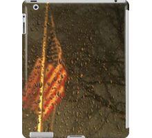 Freezing Flag iPad Case/Skin