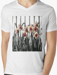 Daffodils in Spring Mens V-Neck T-Shirt