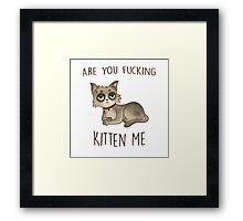 Are you fucking kitten me. Framed Print