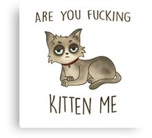 Are you fucking kitten me. Canvas Print