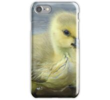 I'm Just So Cute Canada Goose Gosling iPhone Case/Skin