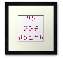 Do Not Touch in Braille in Pink Framed Print