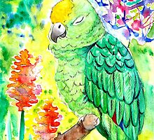 Sleepy Parrot Painting || Watercolor and Ink by Almonda