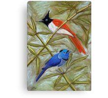 Paradise flycatcher & Black-naped monarch pastel painting Canvas Print