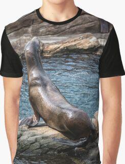 SL-WEEK 12: Animal Graphic T-Shirt