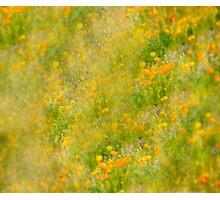 Springing Into Springtime Photographic Print