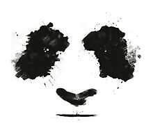 Panda Painting (Face Features) Photographic Print