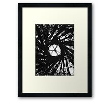 Natural Witchcraft Framed Print