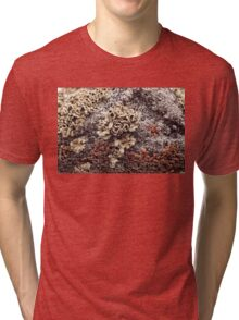 New Mexico Lichen on Desert Rock #1 Tri-blend T-Shirt