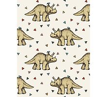 Triceratops & Triangles Photographic Print