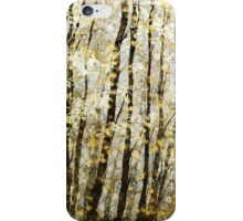 Fall, First Light iPhone Case/Skin