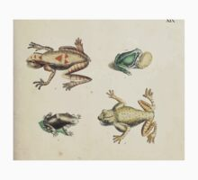 Naturgeschichte in Bildern mit erläuterndem Text E Strack 1820 Lief 3 Reptiles 019 One Piece - Short Sleeve