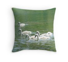 Signets / baby swans Throw Pillow