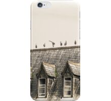 Seagulls on a roof - Cornwall iPhone Case/Skin