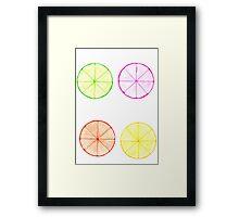Citrus Combo  Framed Print