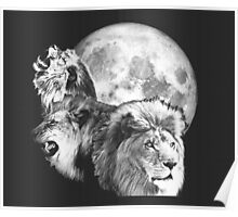 3 Lions with Moon Poster