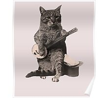 Cat Playing Banjo Guitar Poster