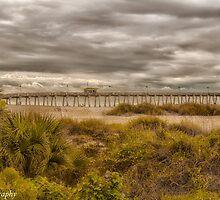 Venice Fishing Pier  by John  Kapusta