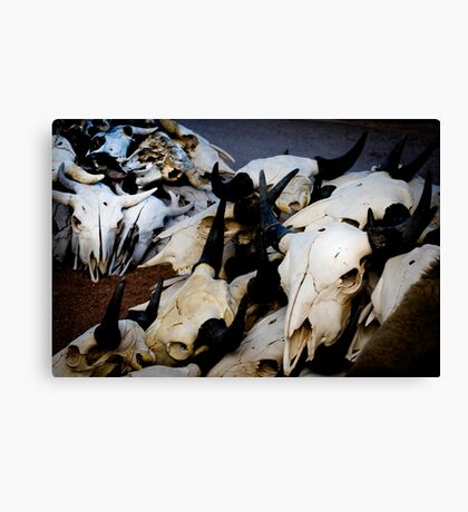 The Good. The Bad. The Ugly. And Whatever This Is. Canvas Print