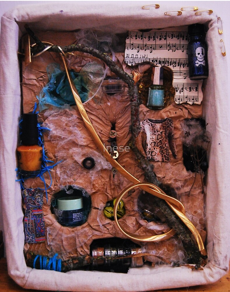 Snake in a box - inspired by Joseph Cornell boxes by Inese