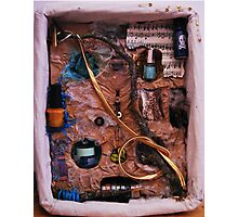 Snake in a box - inspired by Joseph Cornell boxes Photographic Print