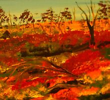 Australian Wildflowers - Western Australia by Margaret Morgan (Watkins)