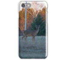 The Look Outs iPhone Case/Skin
