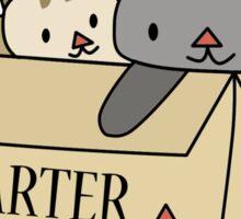 Crazy Cat Lady Starter Kit Sticker