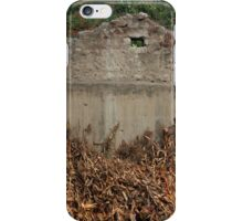 Demolished Building With Drying Corn Stalks iPhone Case/Skin