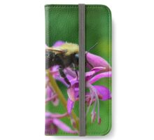 Busy Bee iPhone Wallet/Case/Skin