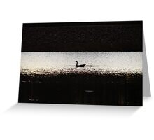 Lone Scout On The Lake Greeting Card
