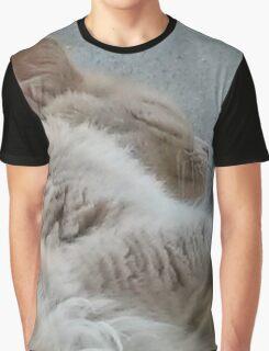 Sleeping Kitty Graphic T-Shirt
