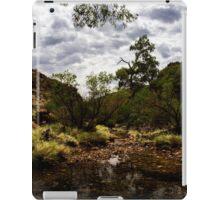 River In The Olgas iPad Case/Skin