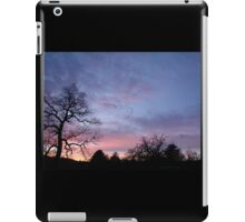 Migration of The Flock iPad Case/Skin