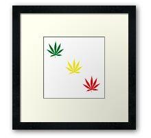 Marijuana Leaf 5 Framed Print