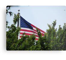 American Flag 2  Metal Print