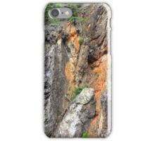 Canyon wall iPhone Case/Skin